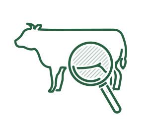 松阪牛個体識別管理 に関する業務